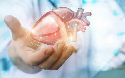 Quoi de neuf en rééducation cardiaque à la Clinique de la Mitterie ?